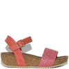 WD-141019-CORAL-0