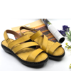 WD-151007-YELLOW